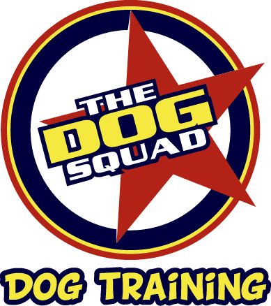 Dog Squad Dog Training